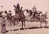 Zangaki image of a marriage procession perhaps in Sudan?