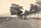Bonfils 1880s Road to the Pyramids