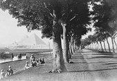 J. P. Sebah # 438. Allee des Pyramides 1890s