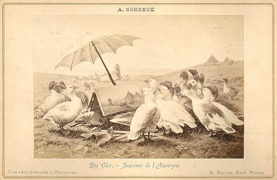 Des Oies - Souvenir de l'Auvergne. See text.