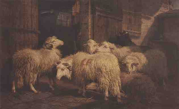 Schenck 1868 work. Title 'Sheep In From The Cold'. See text.