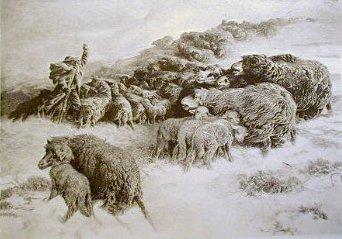 Le Rapel 1884?